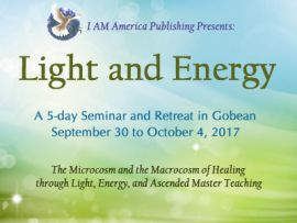 Light and Energy Seminar: Single Ticket